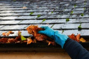 Gutter cleaning with blue professional gloves